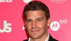 David Boreanaz admits cheating on wife, was it with Rachel Uchitel?