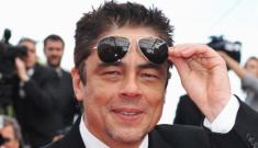 """Benicio del Toro is still a hot piece of man meat"" links"