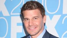 Radar: David Boreanaz also had an affair with porn star Demi Delia