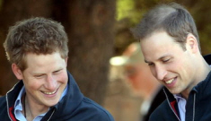 Princes Harry & William hang out with a sexy snake