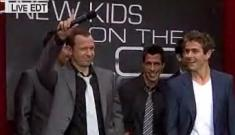 New Kids reunite on Today show
