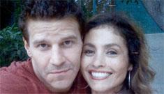 Sexual harassment suit against David Boreanaz is sordid and sounds legitimate