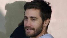 """Jake Gyllenhaal & Rachel Bilson are allegedly dating"" links"