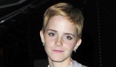 "Does Emma Watson want to steal Robert Pattinson away from ""bimbo"" Kristen Stewart?"