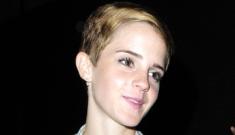 Emma Watson denies thinking Kristen Stewart is a bimbo