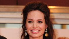 """Does Angelina Jolie fear raising twins?"" links"