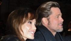 Brad Pitt & Angelina walk the 'Megamind' red carpet in Paris