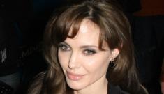 "Bosnian women's group calls Angelina Jolie ""ignorant"""