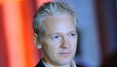 Does anyone else think that Julian Assange is kind-of sexy?