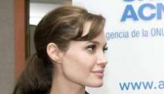 Angelina Jolie celebrates UNHCR's 60th anniversary in Spain