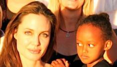 Angelina Jolie & Brad Pitt donate $2 million to animal sanctuary