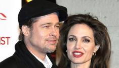 Brad Pitt & Angelina Jolie spent $300 at a Missouri   Kmart