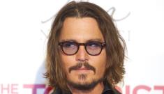 Angelina Jolie & Brad Pitt's bulldog attacked Johnny Depp