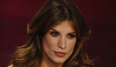 "Elisabetta Canalis: ""My maternal desires are fully satisfied with my dogs"""
