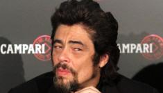 Benicio del Toro impregnated Kimberly Stewart, his rep confirms
