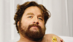 Zach Galifianakis covers GQ, claims Kermit the Frog is condescending in real life