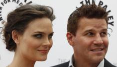 Will Emily Deschanel's pregnancy shut down production of 'Bones'?