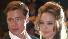 Brad Pitt & Angelina Jolie aren't getting married, People Mag declares