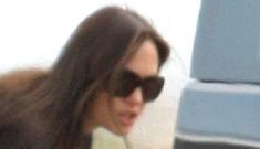 Brad & Angelina have up to six nannies