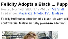 """Did TMZ cross the line with the article """"Felicity Adopts a Black… Puppy"""""""
