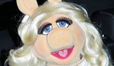 Miss Piggy admits to being 99% botoxed: too tweaked or simply lovely?