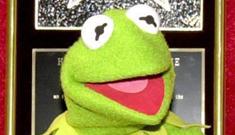 Did Kermit the Frog screw around on Miss Piggy with Rashida Jones?