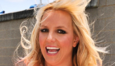 Britney Spears's 'X Factor' rider includes Snickers, Diet Coke, bandage dresses