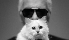 Princess Choupette Lagerfeld gets another mag spread: overexposed & try-hard?