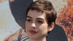 Joseph Gordon Levitt thinks Anne Hathaway is an 'insufferable snob' – maybe
