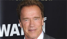 Schwarzenegger 'reassured' Maria after infidelity, told her she still turned him on