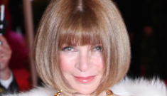 Has Anna Wintour forbidden the fashion industry from dressing Ann Romney?