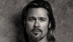 Brad Pitt donated $100K to the Human Rights Campaign for this election cycle