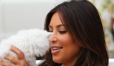 Kim Kardashian announces the death of 4-month-old kitten Mercy Kardashian-West