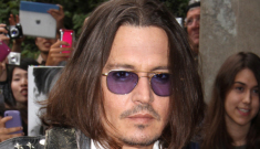Did Johnny Depp cheat on Vanessa Paradis with a young blonde stewardess?