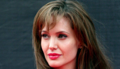Is Angelina Jolie sweet-  talking Vladimir Putin about Russia's new adoption laws?
