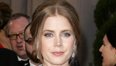 Amy Adams in huge Oscar de la Renta at the Oscars: amazing or ridiculous?