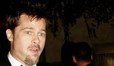 Brad Pitt struggles to learn French