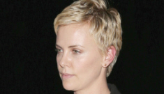 Seth McFarlane & Charlize Theron aren't dating because 'she is not his type'?!