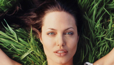 Brad Pitt determined to buy photo of Angelina Jolie getting freaky with a horse