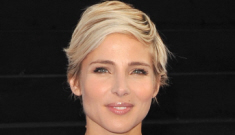 Elsa Pataky in a sparkly gown for 'Fast & Furious 6′ premiere: tacky or lovely?