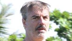 Chris Noth, 59, goes shirtless & mustached in Hawaii: would you hit it?