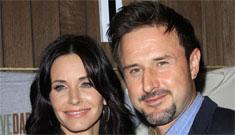 Courteney Cox and David Arquette are divorced finally: sad or inevitable?