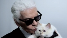 Karl Lagerfeld wants to marry his fluffy kitty Choupette, he admits he 'loves' her