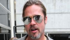 Did Brad Pitt buy Angelina Jolie a second-hand private jet for international flights?