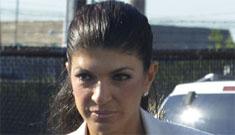 Teresa and Joe Giudice released on $1 million bond, Joe could be deported
