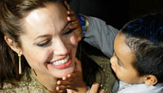 Angelina Jolie's adoption of four year-old Vietnamese boy to go through in May