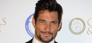 David Gandy holds the sleepiest puppy ever, looks hot: would you shag him?
