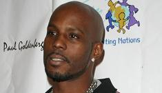 DMX gets 90 days in jail for animal cruelty, possession