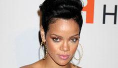 Rihanna's injuries 'horrific' after alleged Chris Brown incident