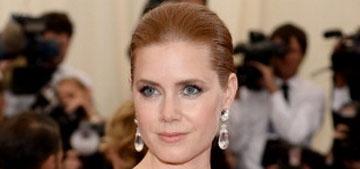 Amy Adams in Oscar De La Renta at the Met Gala: pretty or cheap looking?